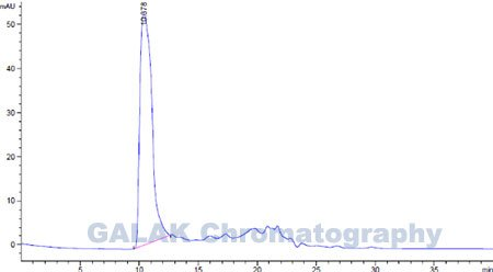 Chromatography gram for the elution liquid of Inactivated Pseudorabies Virus